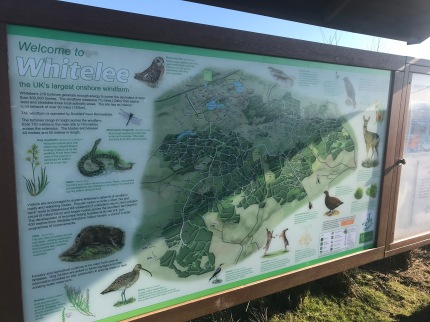 Information board with all trails and wildlife you might spot!
